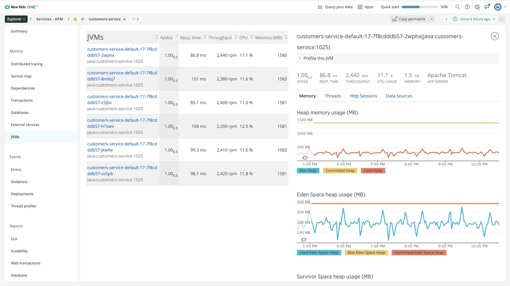 Screenshot 3—shows how many JVMs for all the customers-service application instances.
