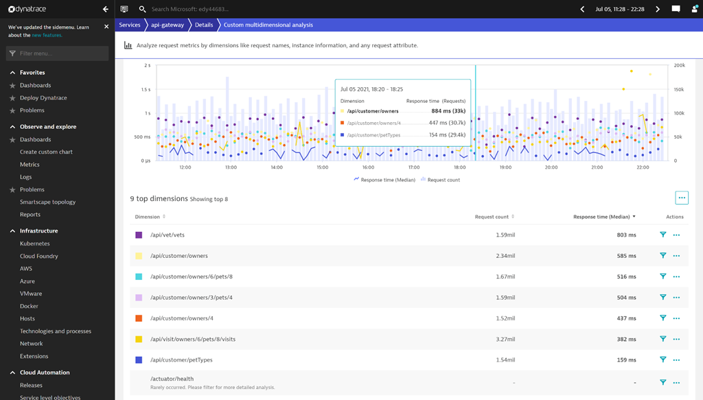 Shows all the active REST API operations within a production workload.