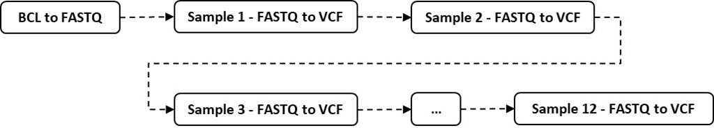 Illustration of sequence of BCL to VCF data conversion steps for genomic analysis.