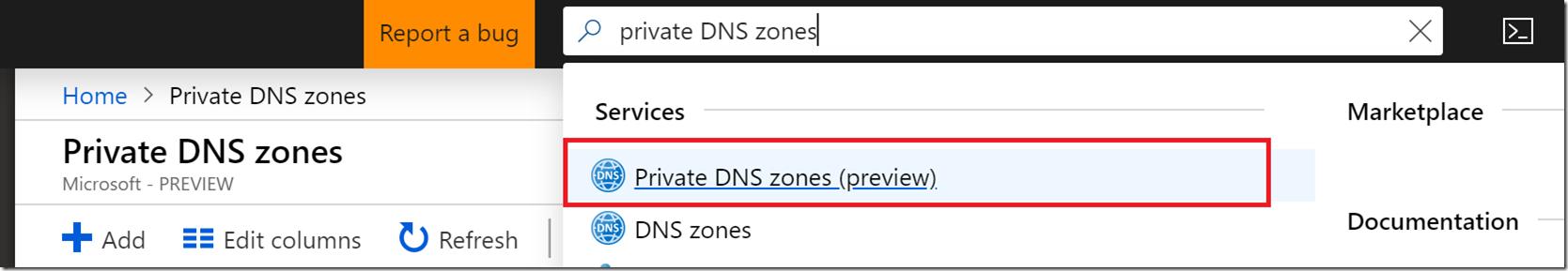 PrivateDNSPortal